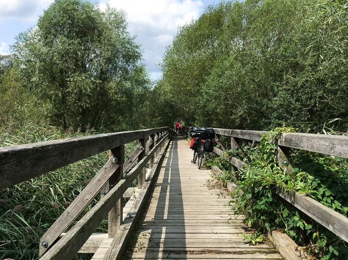 Passerelle en bois surplombant les marais